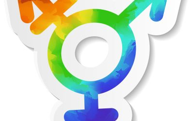 Courts Will Decide Issues of Transgender Discrimination