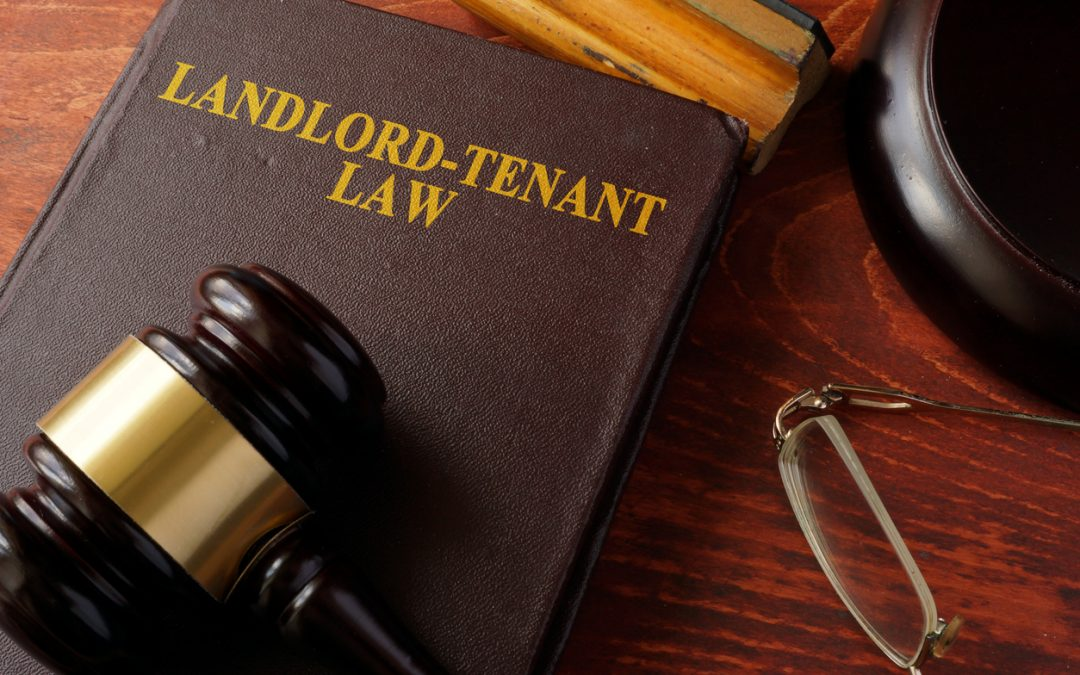 What responsibilities do tenants have in keeping a rental property in good shape?