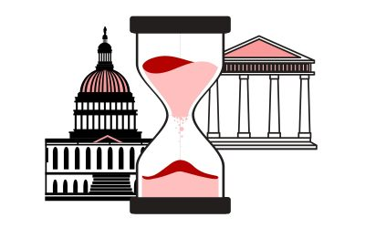 Setting the Terms on Term Limits